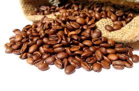 thecoffeeshop.co