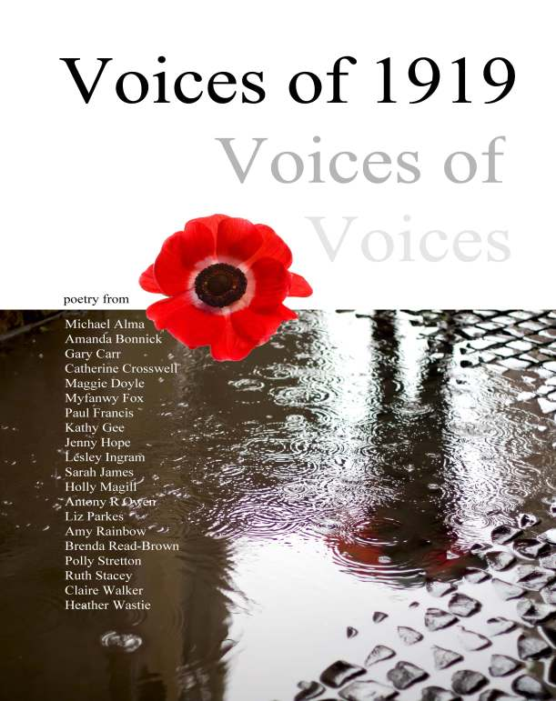 Front cover - Voices of 1919